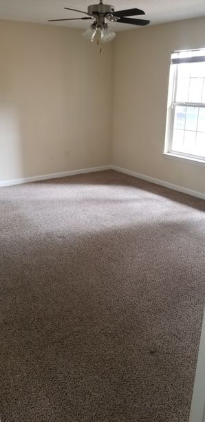 Before & After Carpet Cleaning in Lawrenceville, GA (4)