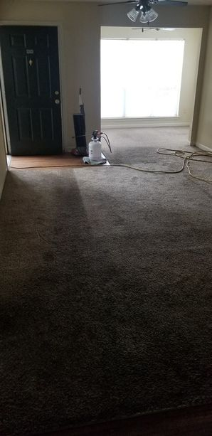 Before & After Carpet Cleaning in Lawrenceville, GA (5)